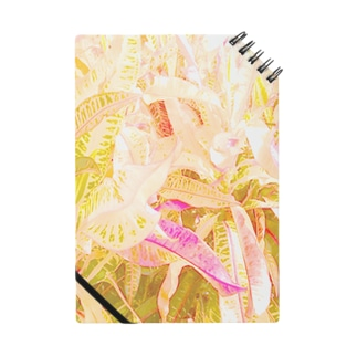 南国の葉っぱ2🌿 ノート