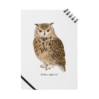 ベンガルワシミミズク カラー Notebook