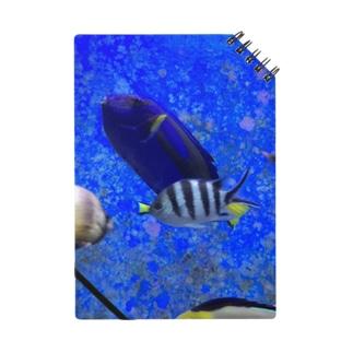 モノトーンなお魚 ノート