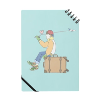 ROMAN飛行へ Notes