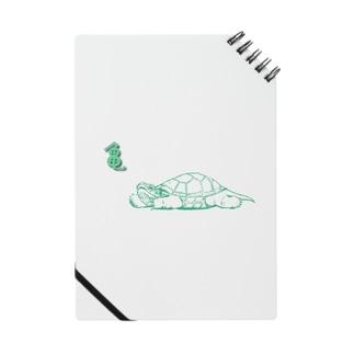 のんびりカメヤマ Notes