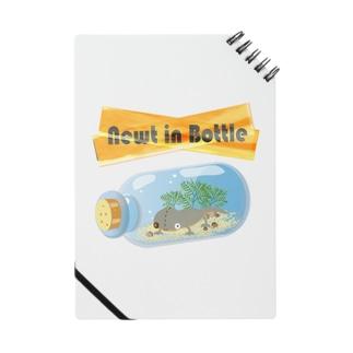 Newt in Bottle Notes