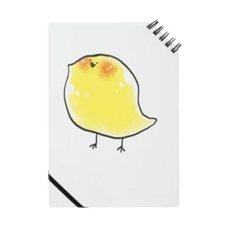 ピヨっこレモン Notes