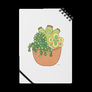 多肉植物たにくさんの多肉植物たにくさん (テラコッタのプランターに集合) Notes