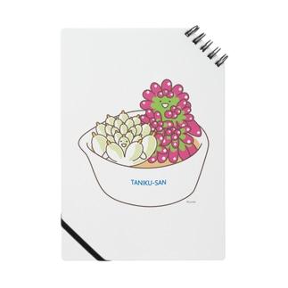 多肉植物たにくさん (小鉢に集合) Notes