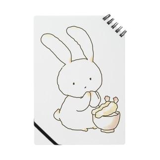 天丼ウサギ Notes