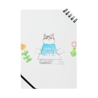 HAKO LOVE! Notes
