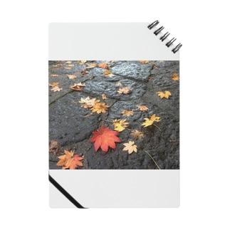 JUNSEN(純仙)日光の足跡2016 ノート