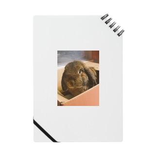おはこおにぎり Notebook