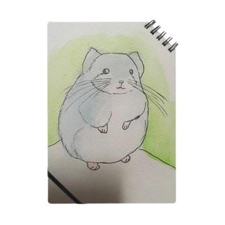 チンチラ Notebook
