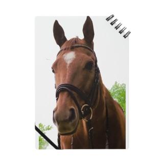 牧場の馬 Notes