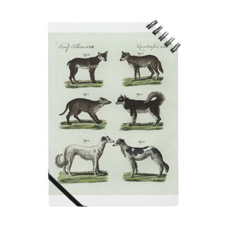 J. Jeffery Print Galleryの1802年ドイツの犬たちノート