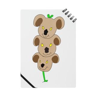 植物✖︎コアラ Notes