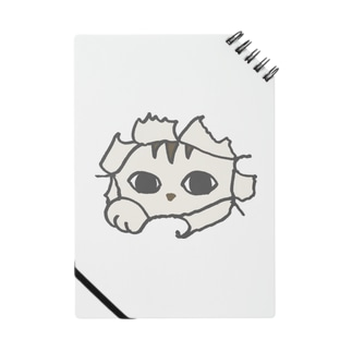 トッパ猫 Notes