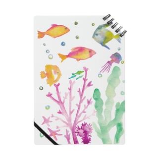 つれづれ魚 Notes