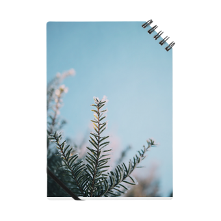 kaoru_andのfrost 2018 Notes