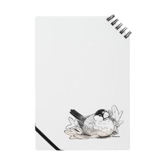 文鳥とオークの葉 Notes