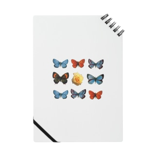 Rose in Butterflies Notes