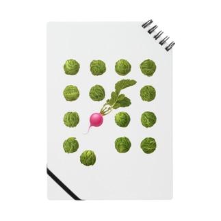 芽キャベツとラディッシュ Notes