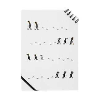 日本で飼育されているペンギン11種 Notes