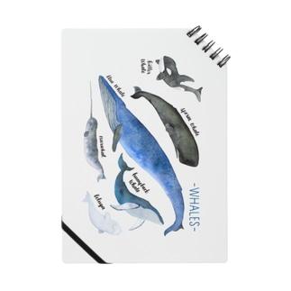 クジラまみれ Notes