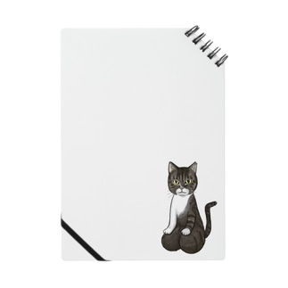 [チャリティ]正座猫_もも Notes