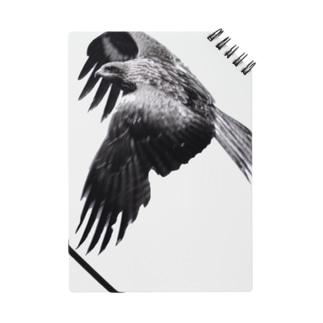 猫島、鷹は美しき翼を広げて飛んだ Notes