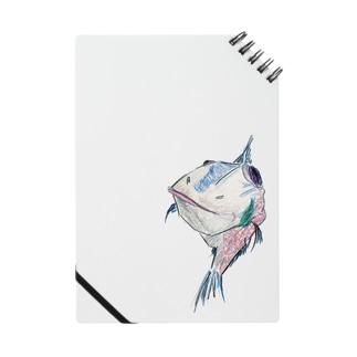 fish Notes