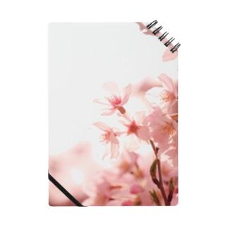 薄桜 ノート