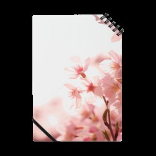 M.F.Photoの薄桜ノート