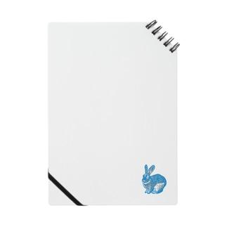 USAGI BLUE Notes