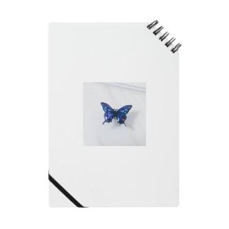 蝶 ノート