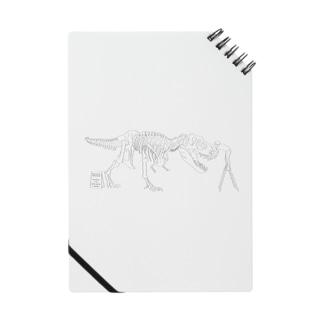 休日の博物館(恐竜・ティラノサウルス) Notes