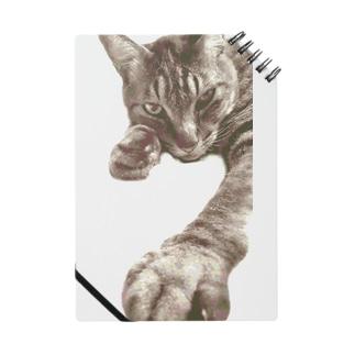 猫様最高!のノート Notes