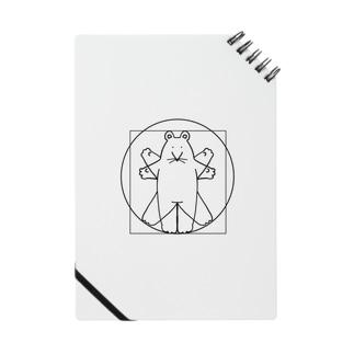 ゆるらっと 鼠体図 Notes