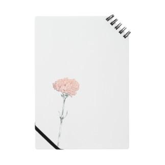 カーネーション B pink Notes
