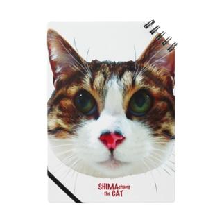 SHIMA chang the CAT 4 Notes