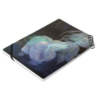 鍾乳洞の妖精 Notes
