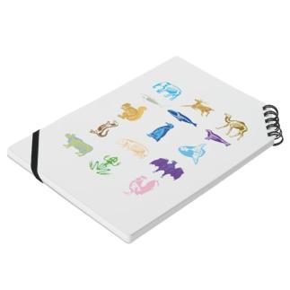 Animalia Anatomy Notes