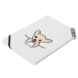 Pocket  zura-chan Notes