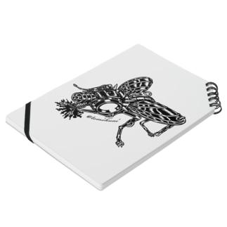 """Animalia Kinky """" Black Fly """" Notes"""