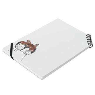 猫のCちゃん-L Notes