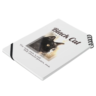 凛々しい黒猫 Notes