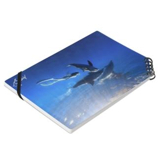 Ayano & Dolphin クリアな商品 Notes