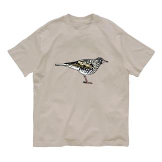 トラツグミのトラさん(カラー) Organic Cotton T-shirts