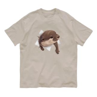 ひょっこりカワウソ Organic Cotton T-shirts
