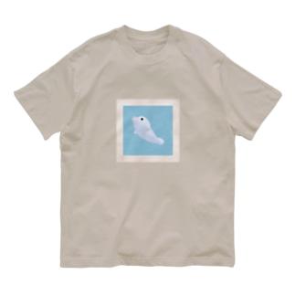 フォト Organic Cotton T-shirts