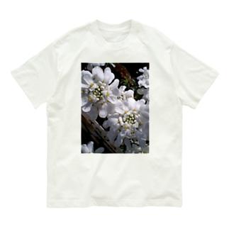 シュガーキャンディー Organic Cotton T-shirts
