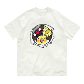 なかよしインコ【まめるりはことり】 Organic Cotton T-shirts