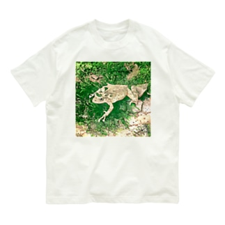 Fantastic Frog -Evergreen Version- Organic Cotton T-shirts